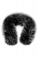 Schwarzer Fin Raccoon mit weißen Spitzen